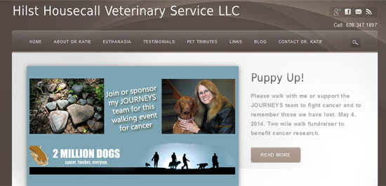 screenshot of vet's home page with big top slider and call to action button