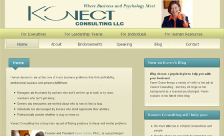 Konect Consulting ~ Karen Ostrov